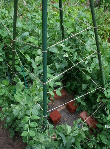 snow pea support tower | by woodleywonderworks