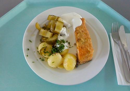 Lachsfilet & sautierte Gurken / fillet of salmon & sautéed cuke | by JaBB