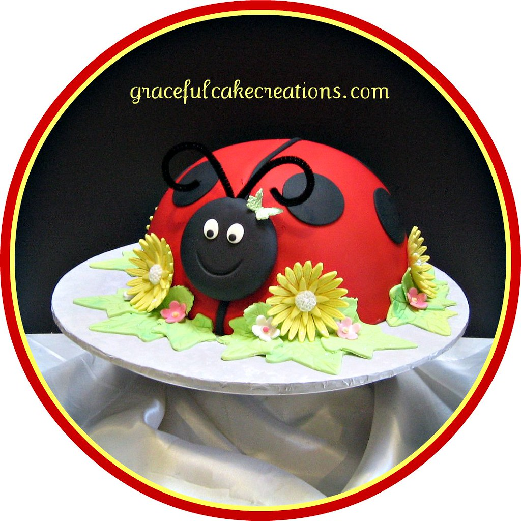 Wondrous Ladybug Birthday Cake Grace Tari Flickr Funny Birthday Cards Online Fluifree Goldxyz