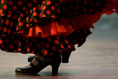 Flamenco | by Jean-David & Anne-Laure