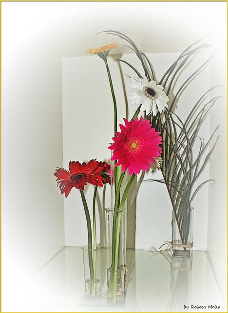 Three vases ...