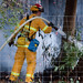 2010-10-13 Felton Wildland Fire