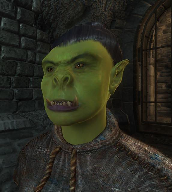 Oblivion Orc female face | Flickr
