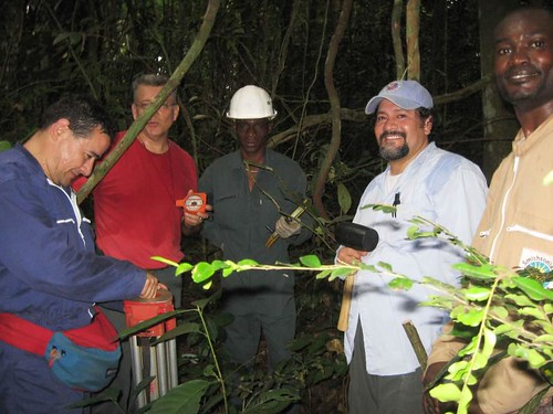 Fri, 10/09/2009 - 04:15 - From left to right: Alfonso Alonso, Director for Conservation of CCES at the Smithsonian Institution National Zoological Park; Frank Chatar, Shell Gabon, Topographic Engineer; Frank, Shell Gabon, Topographic Technician; Gorky Villa, Associate Botanist of Finding Species and lead manager for the establishment of the SIGEO plot in Gabon; Landry Tchignoumba, Technician in the Department of Ornithology, Smithsonian Institution National Zoological Park. Credit: Gorky Villa.