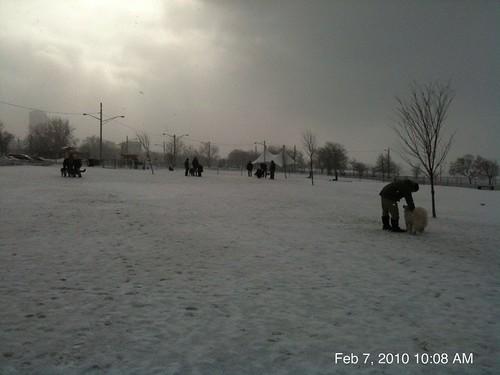 Buffalo Barkyard in winter