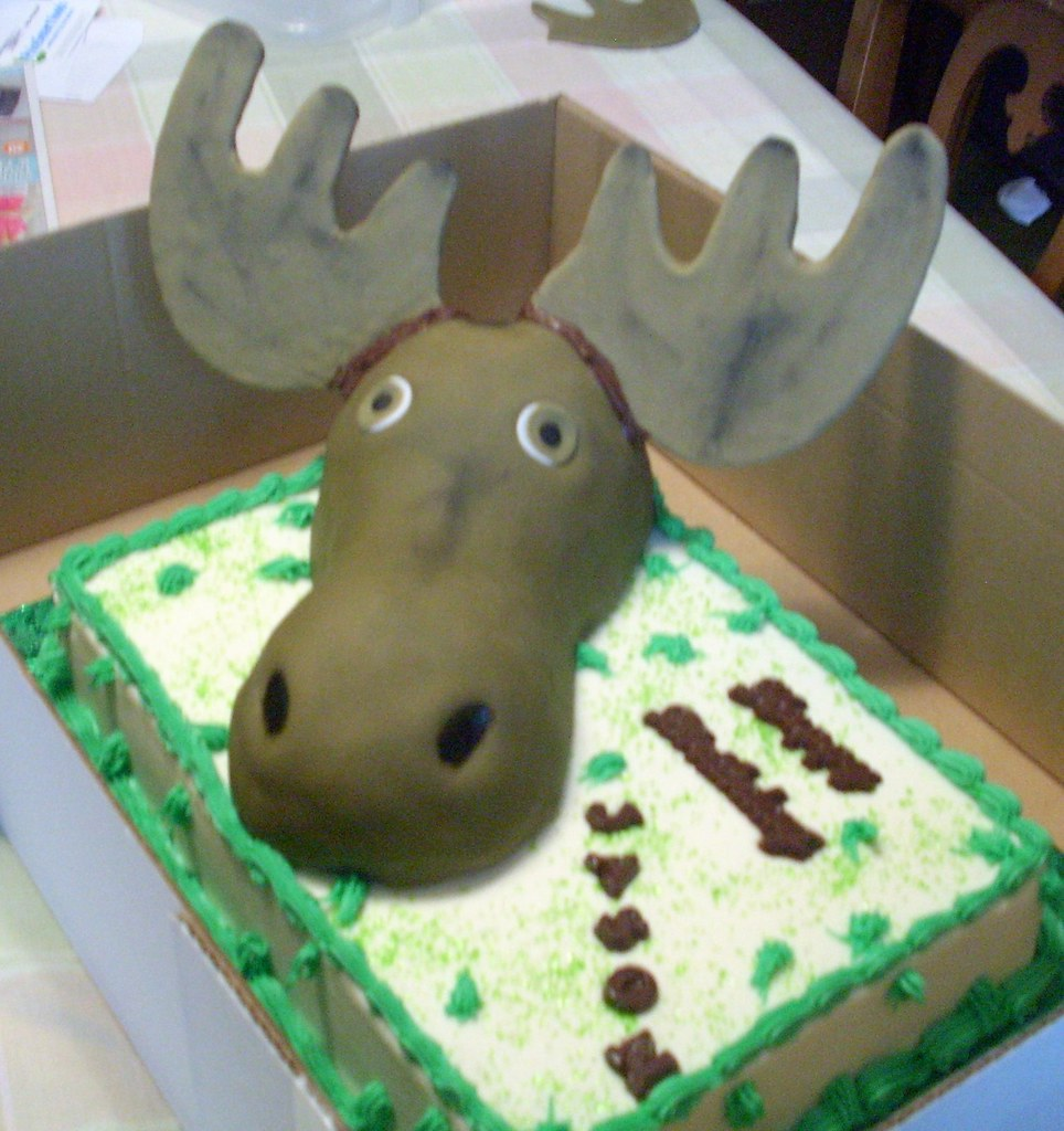 Magnificent Moose Cake Theresa Flickr Funny Birthday Cards Online Overcheapnameinfo