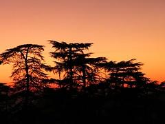 Sunset at Shimla