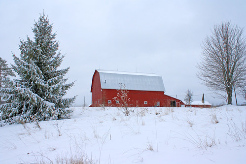winter red snow barn rural michigan farm country farming ag february agriculture redbarn raytownship