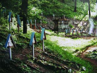 CMENTARZ NA WZGÓRZU PUSTKI W ŁUŻNEJ, fot. M. Klag (MIK, 2006)