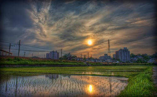 sunset sky green yellow japan clouds photoshop canon landscape golden aperture 日本 ricefield hdr ricepaddy goldenhour aichiprefecture honshu 愛知県 mikawa photomatixpro 岡崎市 eos450d 本州 davidlaspina rebelxsi kissx2 1855efsis topazadjust okazakicity japandave japandavecom 三河国