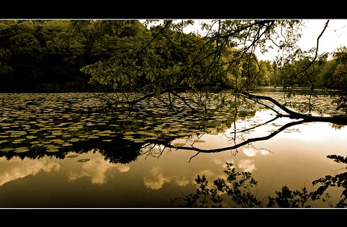 reflection sepia pond nikon creative lac moment étang septfontaines 25faves mywinners d40x vanagram paololivornosfriends