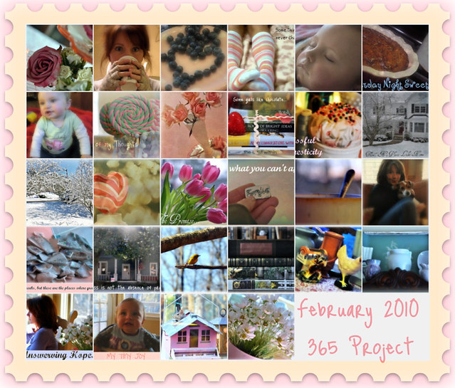 February 2010 365 Project