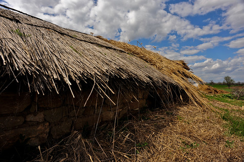 Straw Roof | by goingslowly