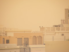 Friday dust storm