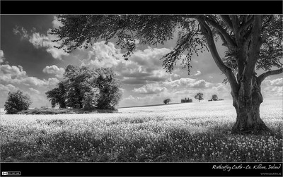 Ancient Rathcoffey (Monochrome HDR)