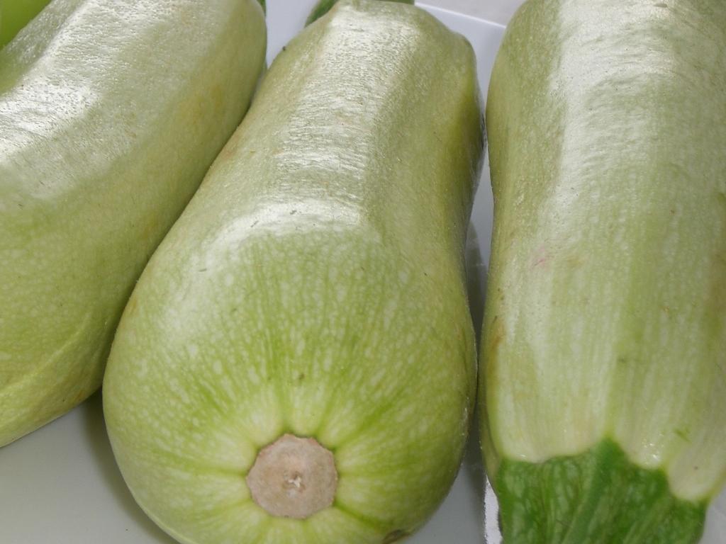 zucchini | F_A | Flickr