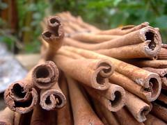 Cinnamon | by Steelshots