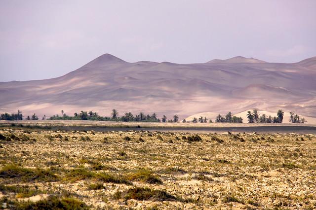 Paracas Desert, Ica, Peru.