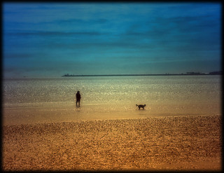 One Man and his Dog | by wolfmanmoike