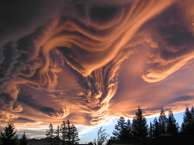 Asperitas Cloud, formerly Undulatus Asperatus
