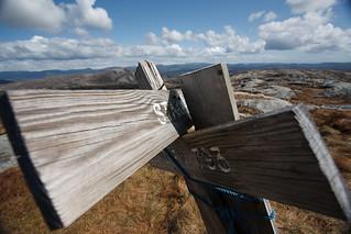 Valhest   by Tor Håkon