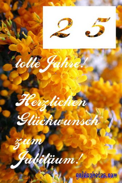 25 Geburtstag Gelbe Blueten Sweden Gaidaphotos Kostenlose