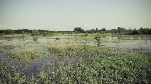 20d canon polska slideshow floods maradi sandomierz powódź tarnobrzeg fotokast wwwxmaradixblogspotcom
