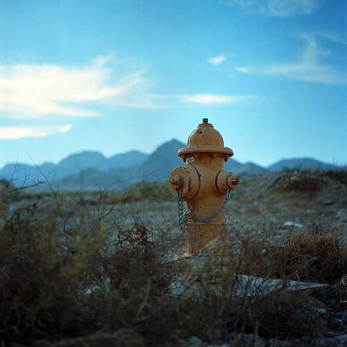 vegas blue 120 6x6 film nature yellow mediumformat square landscape desert lasvegas hasselblad firehydrant redrock summerlin hasselblad500cm kodakportra160nc carlzeissplanar80mmf28 autaut canoscan8800f
