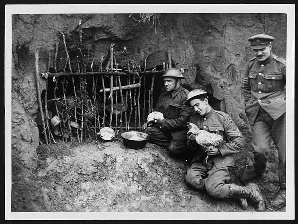 Fowl house in the trenches just behind the front line | Flickr