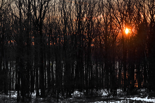 trees sunset water newjersey haiku nj reservoir merrillcreek warrencounty