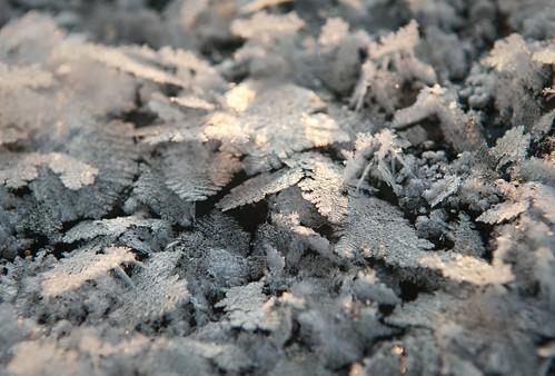 snowflake sunrise pure icecrystals joemurphy josephlmurphy jmurphpix