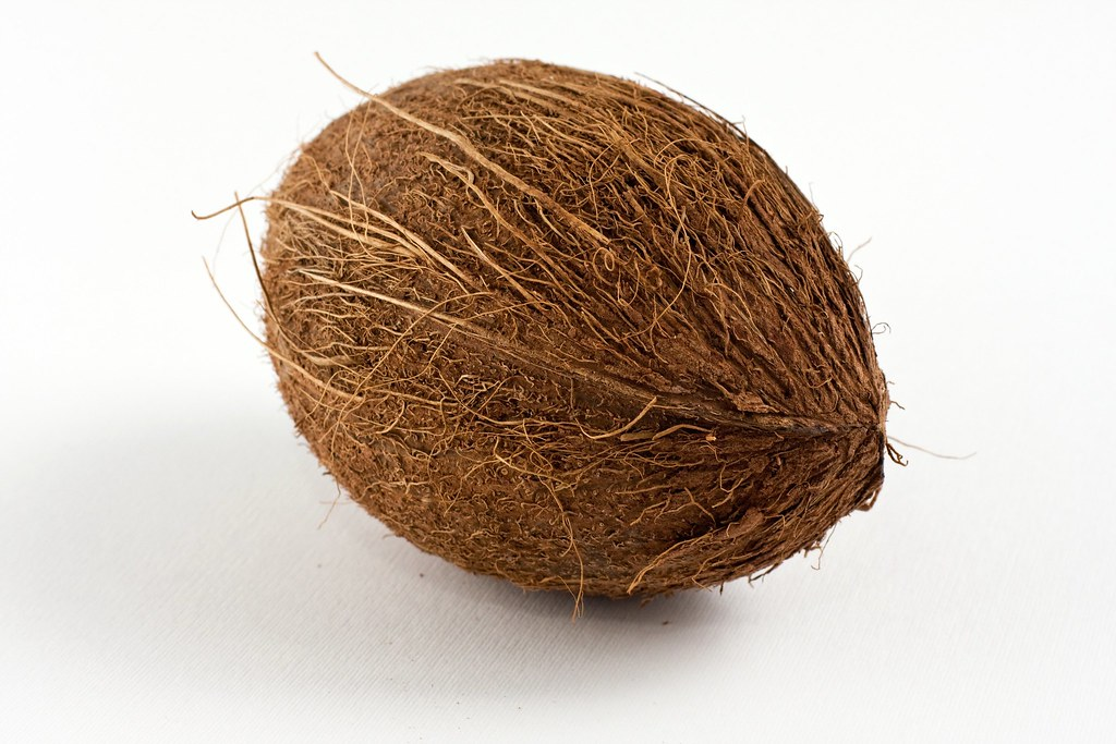 oval shaped brown coconut brown coconut with dried outer