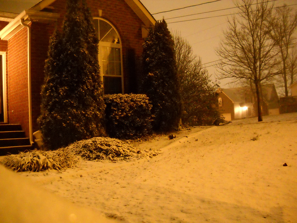 Home In Snow At Night