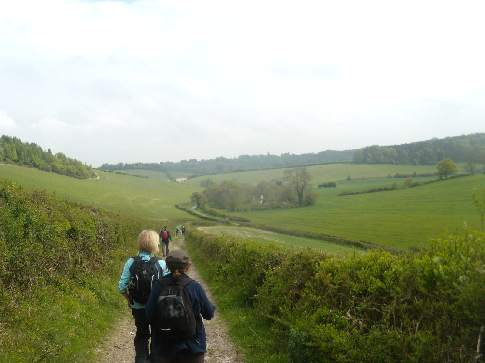 Down to St James's Henley Circular via Stonor