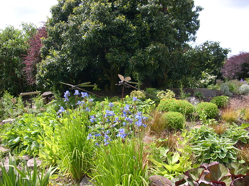Pensthorpe | by mad woman with the cats