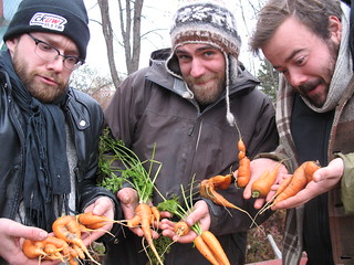 The Crooked Brothers (band) with their Carrots (weird) | by Soggy Creek Seed Co.