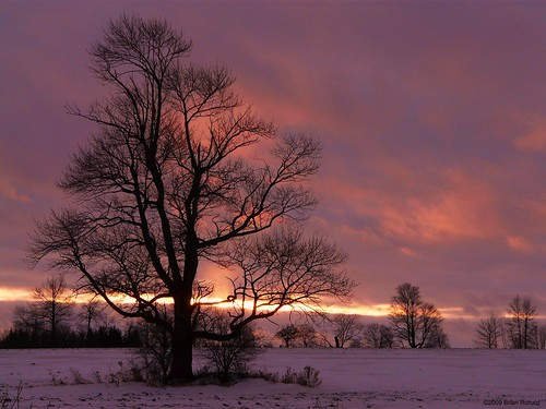 pink winter snow sunsets fergus picnik topseven mywinners anawesomeshot vosplusbellesphotos saariysqualitypictures flickryes yourwonderland coth5