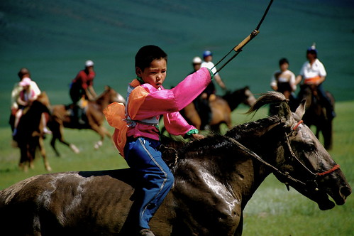 Naadam Competition