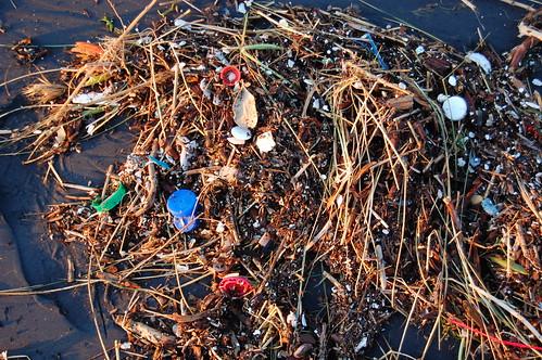 Plastic Ocean | by Kevin Krejci