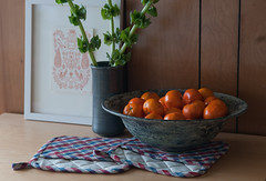 potholders   by maggiemakes