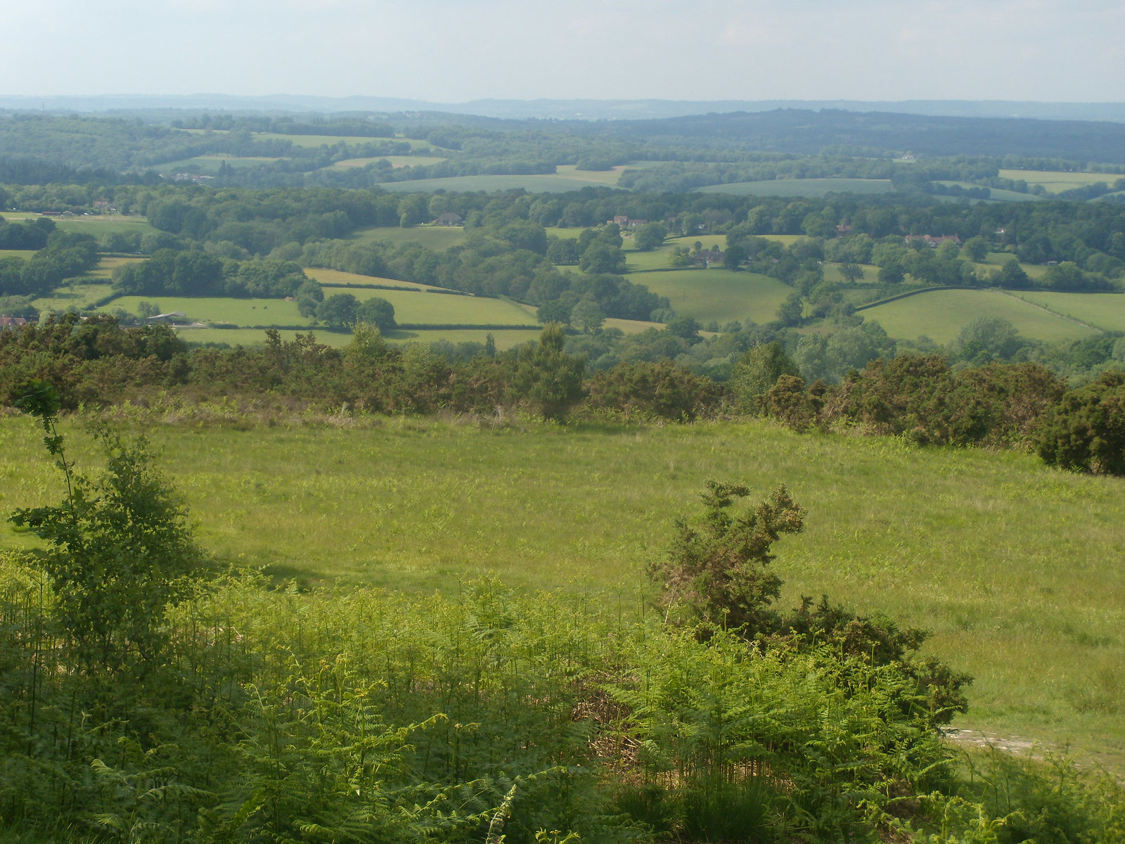 View from Ashdown Forest Ashurst Circular
