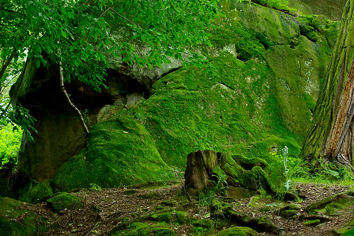 170/365: Green rock   by Rrrodrigo