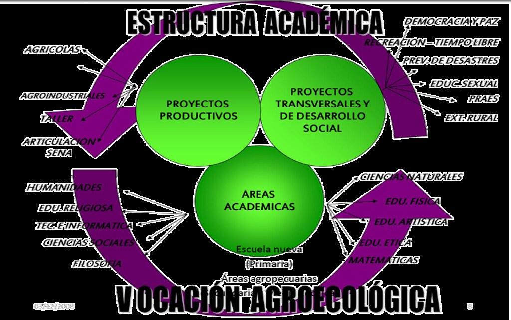 Estructura Curricular Institución Educativa Julio Fernande