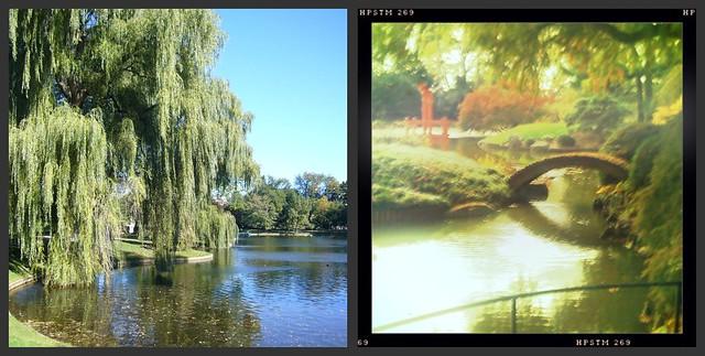 Boston & Brooklyn Botanical Gardens