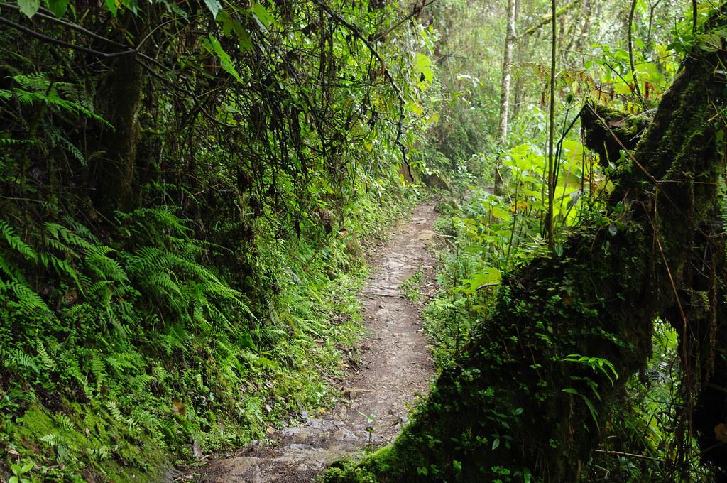 Inca Trail (Fourth Day), Peru