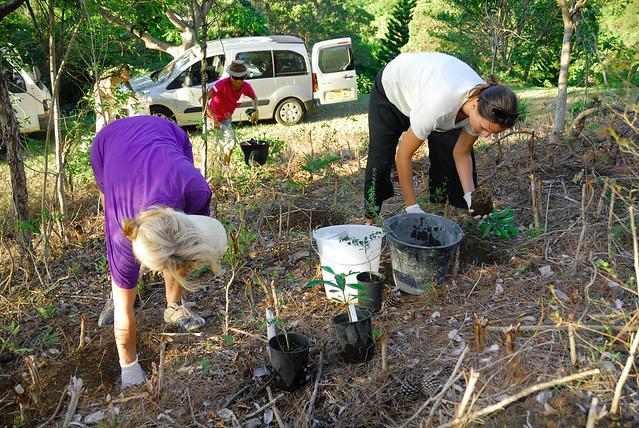 Programme de conservation Forêt Sèche