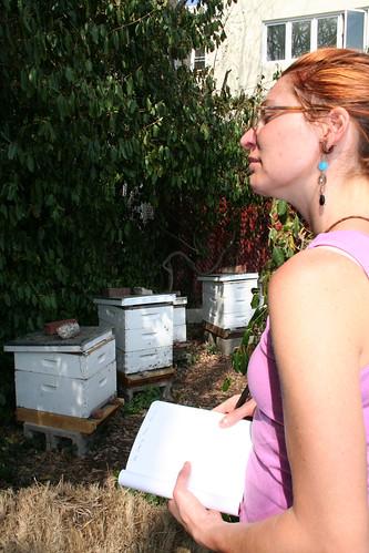 Bee Workshop at Southwark Garden
