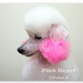 PinkHeart Ear