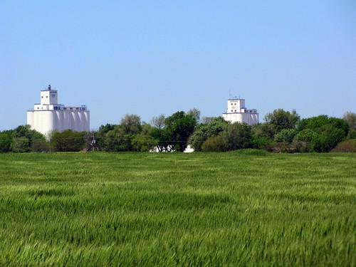 rural farming anthony kansas coop agriculture grainelevators