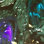 Tristan  Burfield-Prepared Negatives